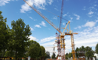 Luffing Tower Crane Model LTC5522-14 for South Korea Market Comes off the Production Line